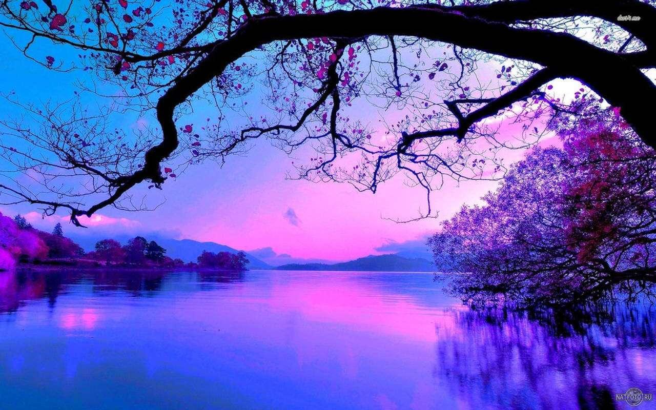 баланс белого - пурпурный